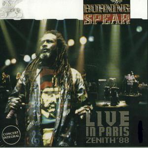 Live in Paris: Zenith '88 album