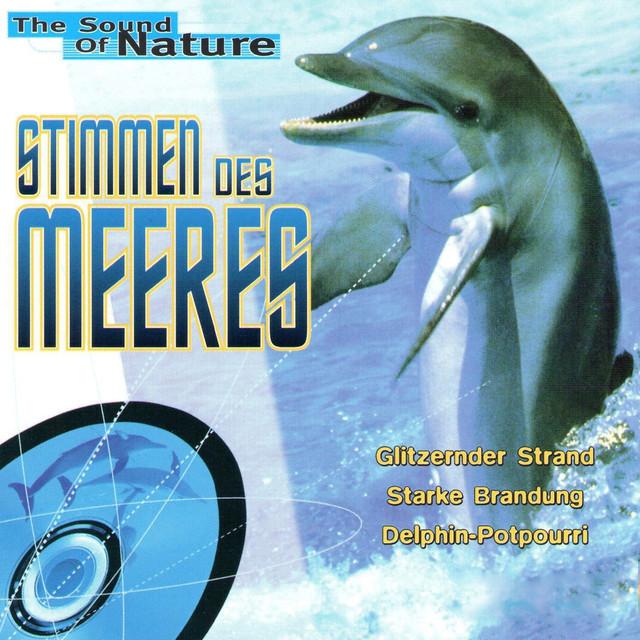 Stimmen des Meeres Albumcover