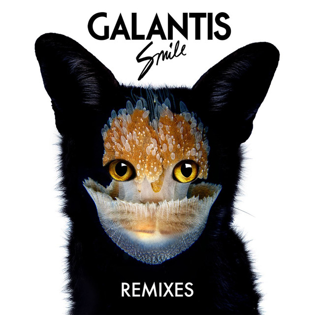 Smile: Remixes