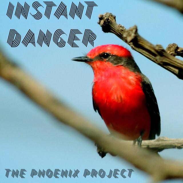 The Phoenix Project (Sample Album)