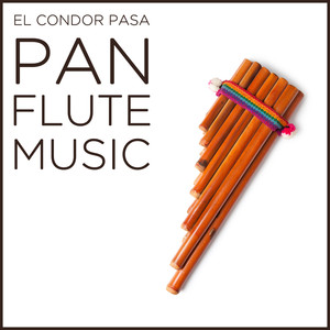 Music of the Andes album