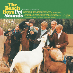 Pet Sounds (Mono) album