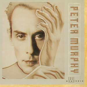Peter Murphy Funtime cover