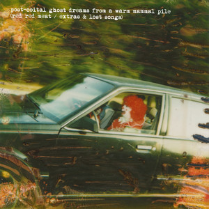 Post-Coital Ghost Dreams From a Warm Mammal Pile album