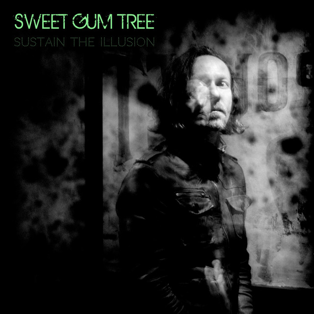 Sweet Gum Tree