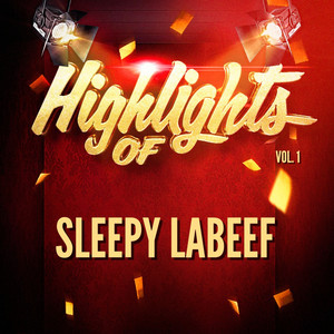 Highlights of Sleepy LaBeef, Vol. 1 album