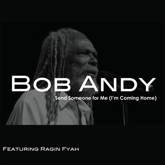 Send Someone for Me (feat. Ragin Fyah) [I'm Coming Home]