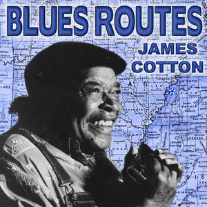 Blues Routes James Cotton album