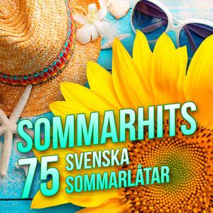 Sommarhits - 75 svenska sommarlåtar - Freestyle