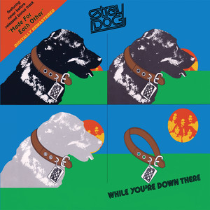 While You're Down There album