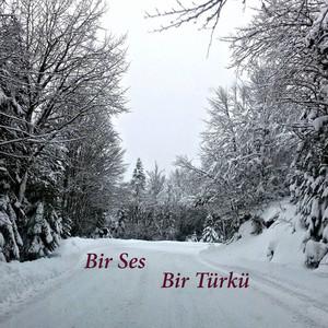 Bir Ses Bir Türkü Albümü