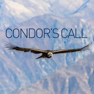 Condor's Call Albumcover