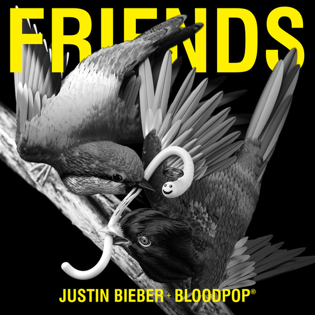 Friends (with BloodPop®)