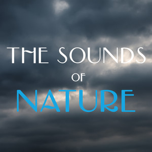 The Sounds of Nature Albumcover