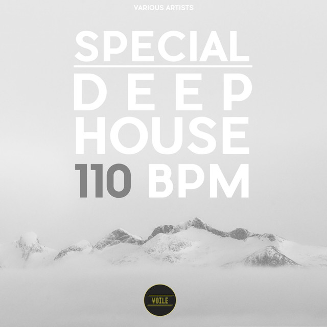 Special Deep House 110 BPM by Various Artists on Spotify