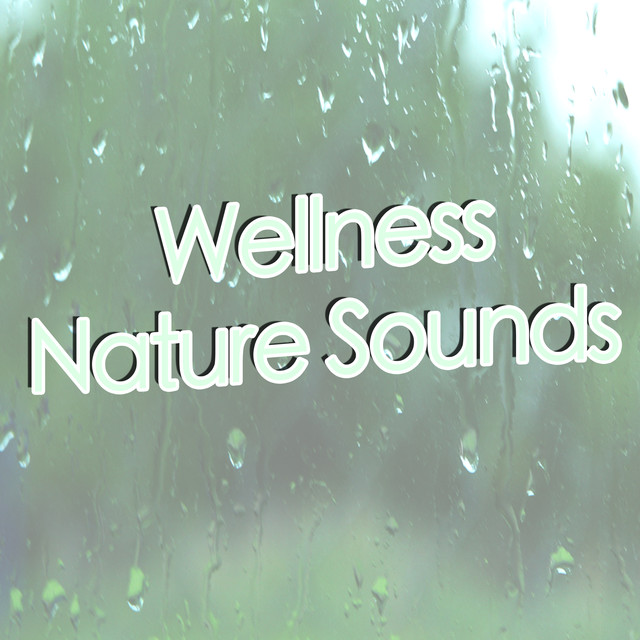 Album cover for Wellness Nature Sounds (Rain) by Rain Sounds, Nature Sounds, Nature Sound Collection