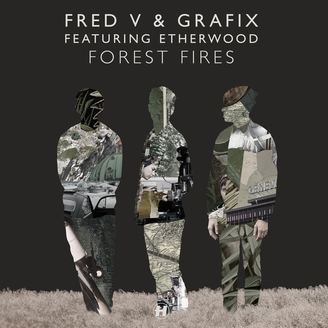 Forest Fires (feat. Etherwood)