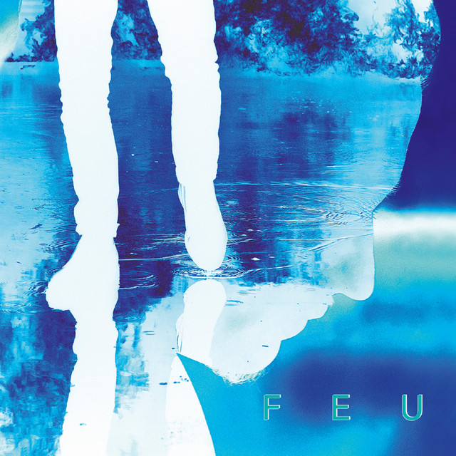 Album cover for Feu (Ré-édition) by Nekfeu