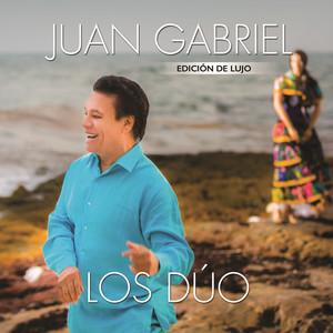Juan Gabriel, Vicente Fernández La Diferencia cover