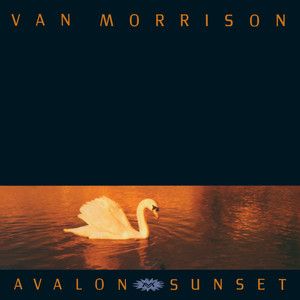 Van Morrison These Are the Days cover