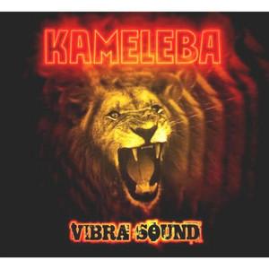 Vibrasound - Kameleba