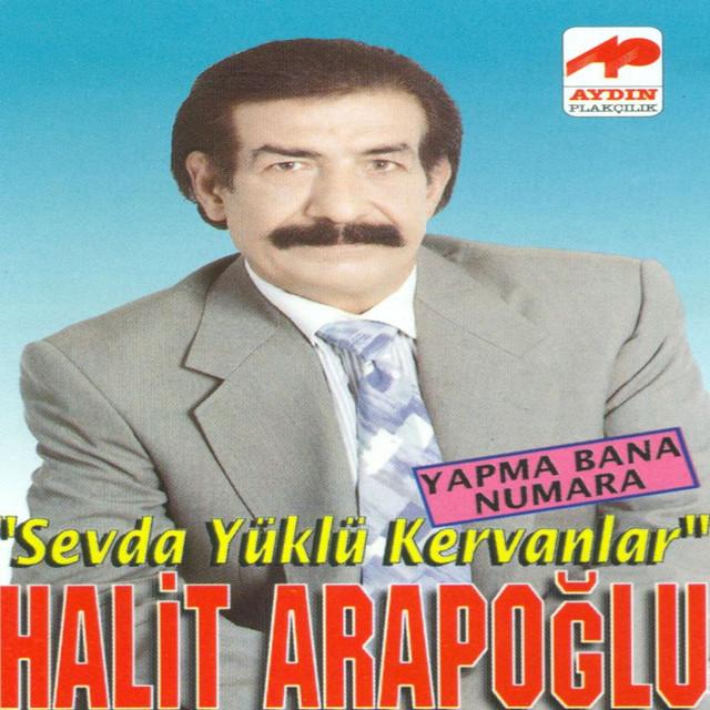 Halit Araboğlu