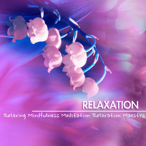 Relaxation - Ambient Music, Relaxing Sounds of Nature for Soothing Mindfulness Meditation Albumcover