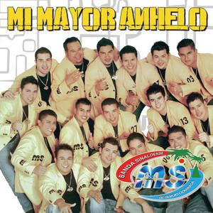 Mi Mayor Anhelo Albumcover