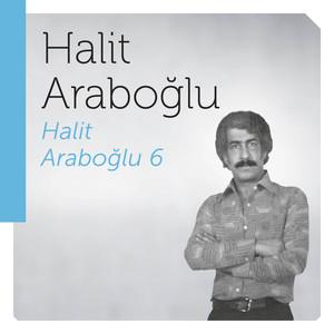 Halit Araboğlu 6 Albümü