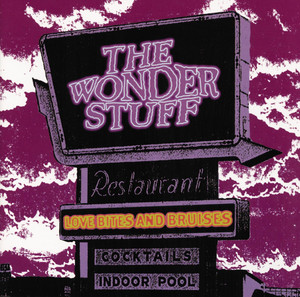 The Wonder Stuff Professional Disturber of the Peace cover