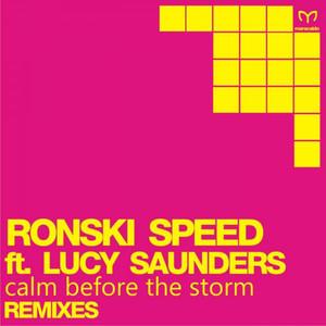 Calm Before the Storm (Remix EP) Albümü