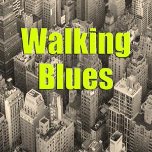 Walking Blues album