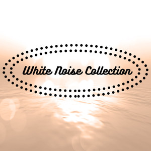 White Noise Collection Albumcover