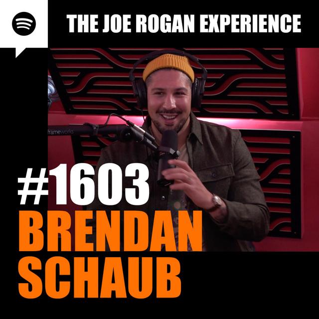 #1603 - Brendan Schaub