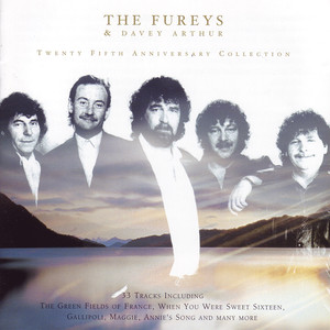 Twenty Fifth Anniversary Collection - Fureys