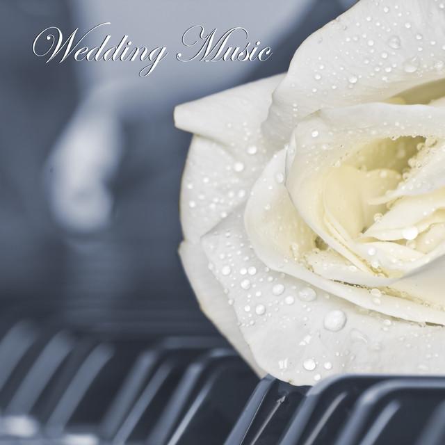 Wedding Background Music, Romantic Piano