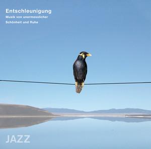 Entschleunigung - Musik von unermesslicher Schönheit und Ruhe (Jazz)