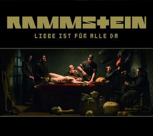 Rammstein Haifisch cover