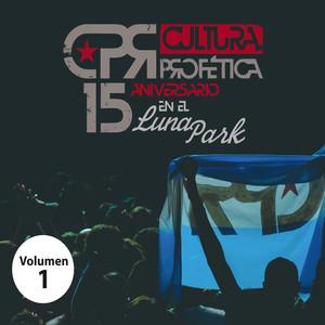 15 Aniversario en el Luna Park (Volumen 1)