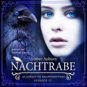 Nachtrabe, Episode 13 - Fantasy-Serie (Academy of Shapeshifters) Audiobook