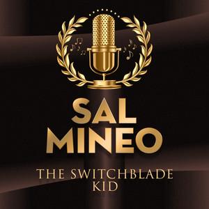 The Switchblade Kid album