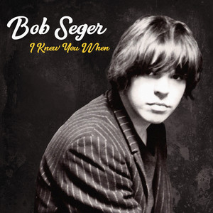 Bob Seger Democracy cover