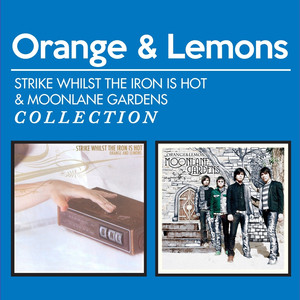 Strike Whilst the Iron Is Hot & Moonlane Gardens Collection - Orange And Lemons
