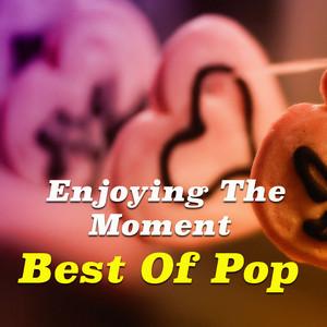 Enjoying The Moment. Best Of Pop album