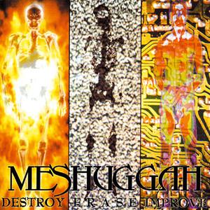 Destroy Erase Improve album