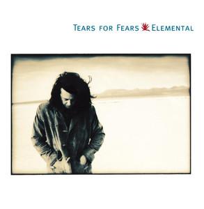 Tears for Fears Break It Down Again cover