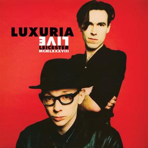 Live 1988 album