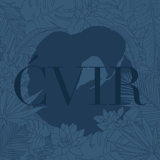 Album cover for Ćvir by Adi Nowak, barvinsky