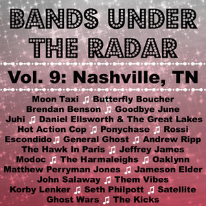 Bands Under the Radar, Vol. 9: Nashville, Tn Albümü