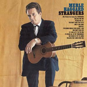 Strangers / Swinging Doors and the Bottle Let Me Down album